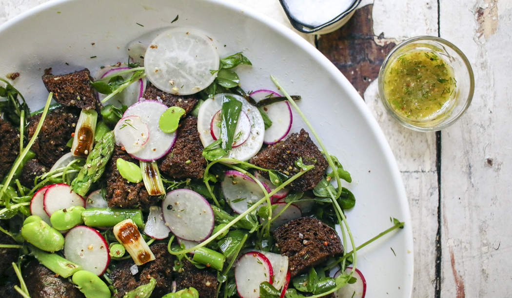 Spring Panzanella Salad with Fava Beans, Asparagus, Grilled Scallions, Radishes, Pea Shoots and Pumpernickel Croutons tossed with a Dill Vinaigrette | I Will Not Eat Oysters